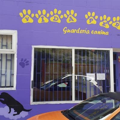 Guardería canina Lupa Chan